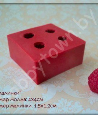 mold-4-malinki-1-5h1-2sm