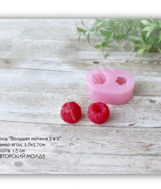 mold-bolshaya-malina-2v1-1-6h1-7sm