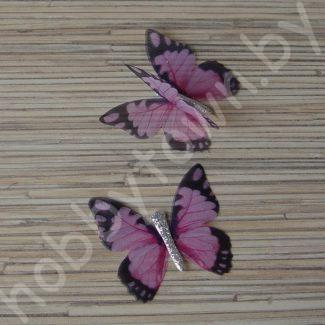 - Шифоновые бабочки
